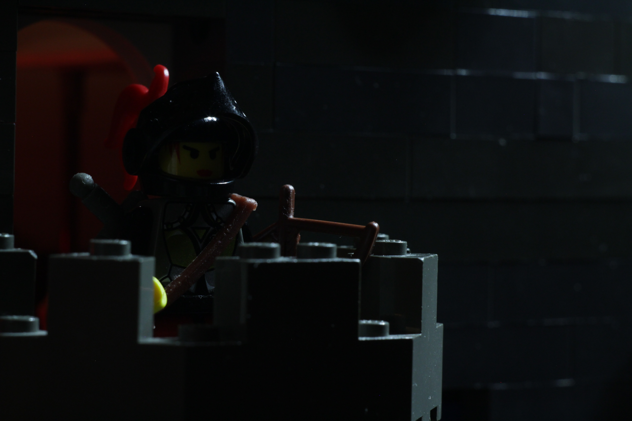 http://bricksafe.com/files/rioforce/Brickfilming/princess-storm/DSC_51318.jpg