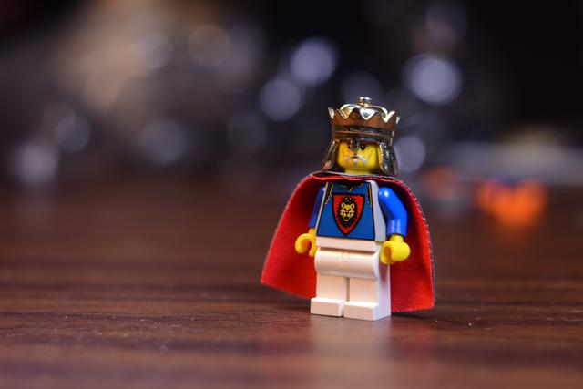 http://bricksafe.com/files/rioforce/Minifigures/King%20Leo/DSC_0425.JPG/640x427.jpg